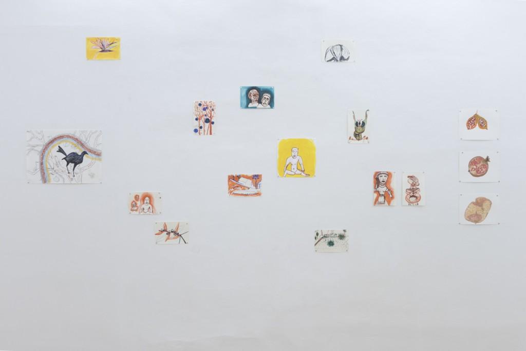 Kresby z Mexika, Quiscalus Mexicanus & his Friends (Xalapa), tuš a akryl na papieri, rozličné formáty, 2016 Foto: Adam Šakový